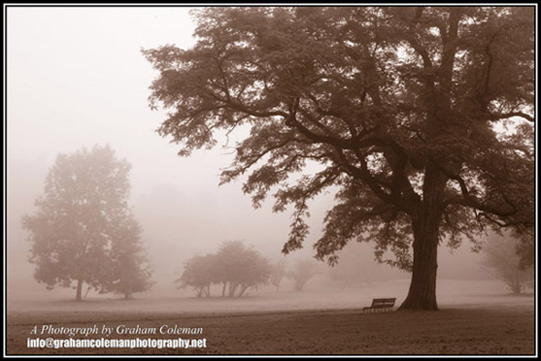St George Park in the Mist in sepia an original photograph by Graham Coleman
